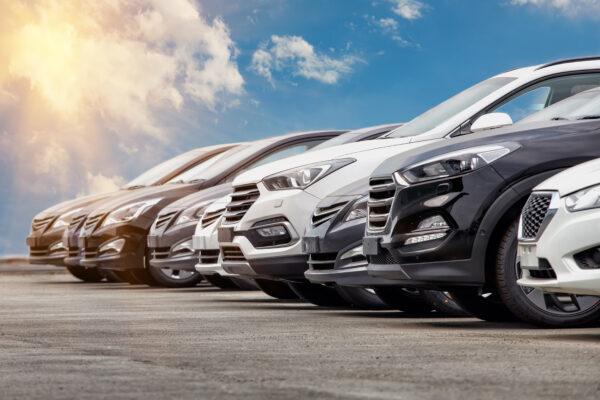 flota samochodowa